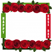 Beautiful Red Rose Day Frame With Your Custom Photo